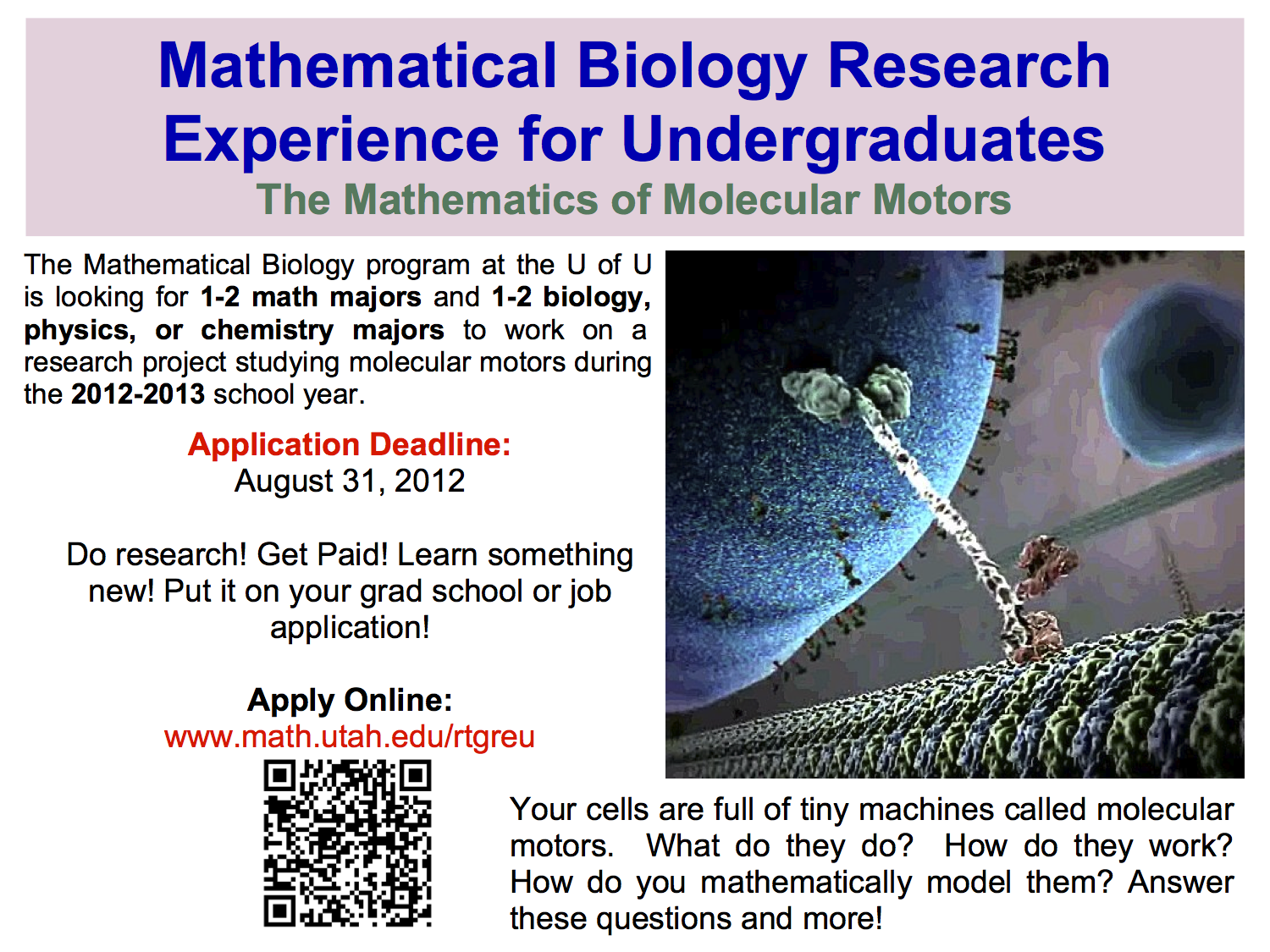 U of U Mathematical Biology RTG REU